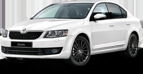 Největší výběr vozidel - Škoda Octavia